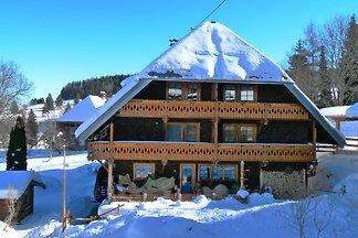 Vakantie-appartement in Bernau im Schwarzwald