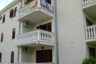 Apartman Alma