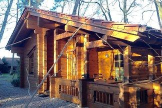Komfortables Ferienblockhaus m. Sauna in Steinhude