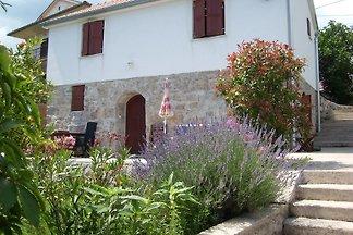 Ferienhaus mit Aussenpool und Panoramablick