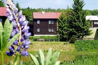 Ferienwohnung in Erzgebirge mit Möglichkeit