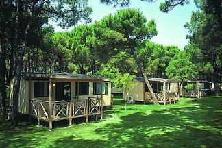 Vakantiehuis Ontspannende vakantie Ferrara