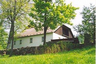 Ferienhaus mit grossem Gartengrundstück am