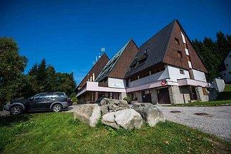 Apartament Dla rodzin Harrachov