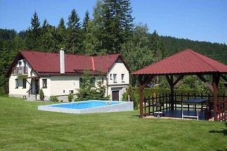 Ferienhaus mit Aussenpool am Wald