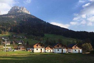 Ferienhaus mit Terrasse und WLAN