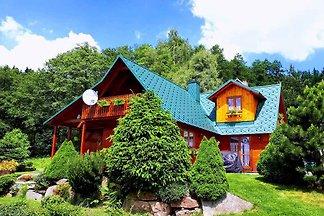 Ferienhaus mit Kamin und Sauna bei Wald