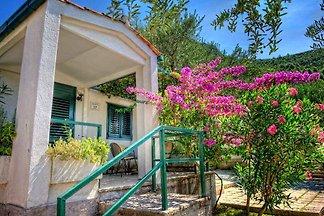 Ferienwohnung in Ferienanlage Bonaca