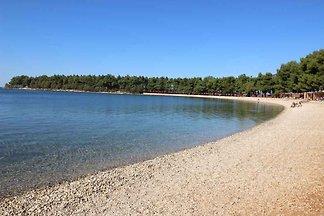 Ferienwohnung mit Klimaanlage in Strandnähe