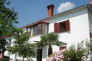 Ferienhaus mit Klimaanlage und Aussenpool