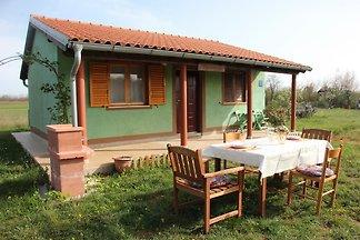 Kuća za odmor Dopust za oporavak Barban