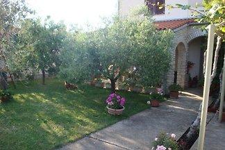 Vakantie-appartement in Stinjan