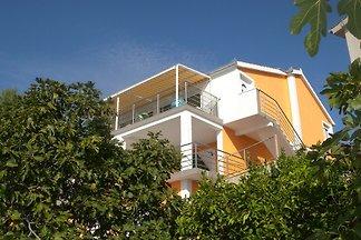 Ferienwohnung mit 55 qm Terrasse und 10 m vom