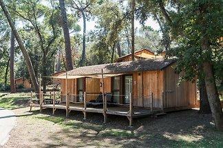 Vakantiehuis Ontspannende vakantie Castagneto Carducci