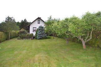 Ferienhaus in Waldnähe