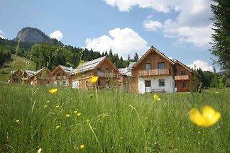 Ferienhaus mit eigener Sauna und rollstuhlger
