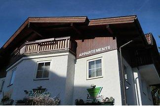 apartman za odmor Obiteljski odmor Zell am See