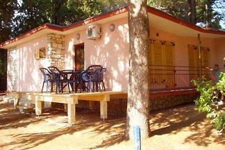 Vakantiehuis Ontspannende vakantie Savudrija