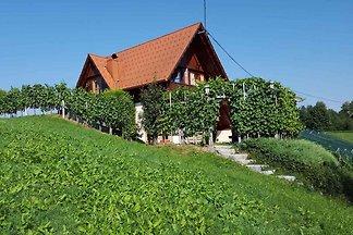 Ferienhaus in the vineyards