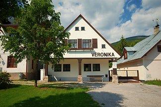 Ferienhaus im Skigebiet