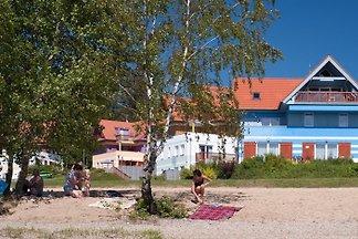 Holiday flat in Lipno nad Vltavou