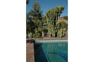 Chalet mit Pool