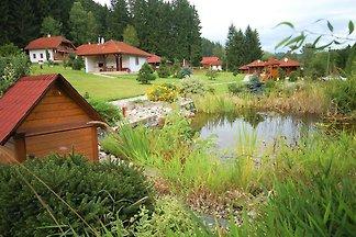 Ferienhaus mit kleinem Teich am Rande des