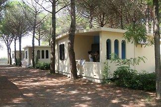 Bungalow mit Terrasse