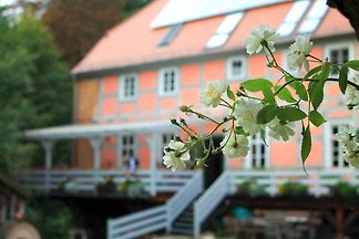 Ferienhaus in einer historischen Wassermühle