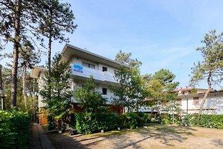 Ferienwohnung mit Terrasse oder Balkon, nur 8