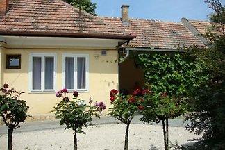 Ferienhaus mit überdachter Terrasse im