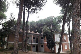 Appartamento Vacanza con famiglia Rosolina Mare