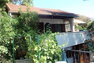 villa dvije palme