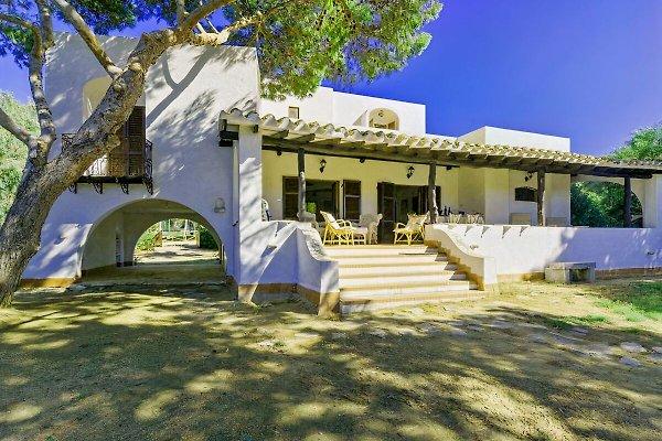Villa Carla - Capo Boi à Villasimius - Image 1