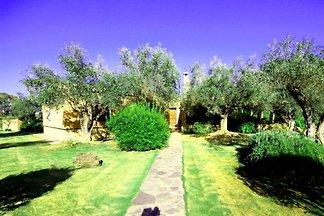 Villa Ulisse avec piscine