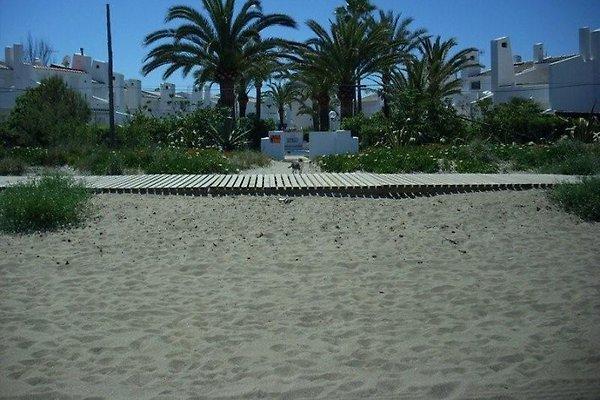 Vom Strand nur durch die Strandpforte und dann ab in den Pool