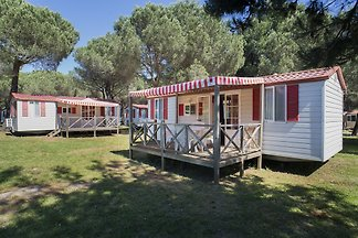 Camp Bi Village