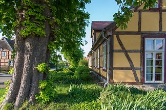 Wohnung Nr. 4 im Gutshaus Neuendorf