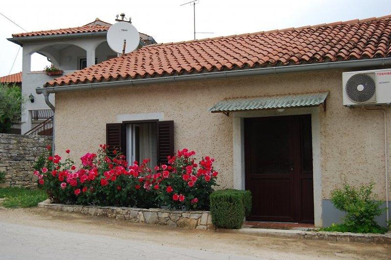 Haus Mira / für 2-3 Personen à Tar-Vabriga - Image 2