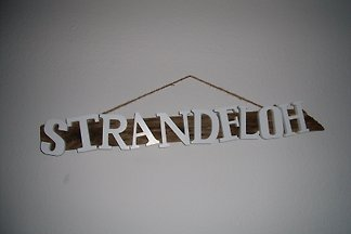 FeWo Strandfloh, Norddeich