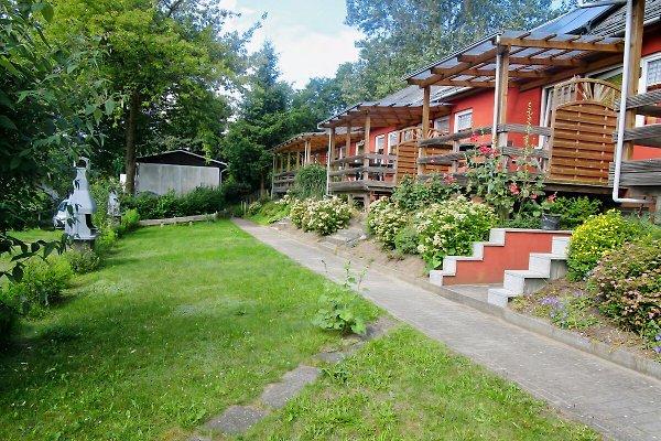 Ferienhaus Möller Am Südhang in Alt Reddevitz - immagine 1