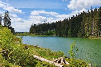 Ruhe-Oase im Harz: GlücksKlee II