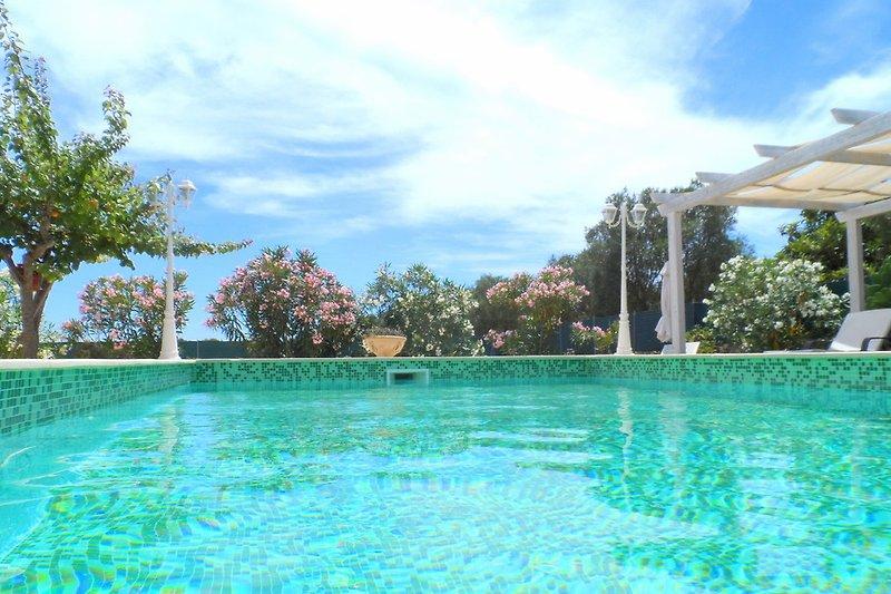 Pool 8 x 4 m
