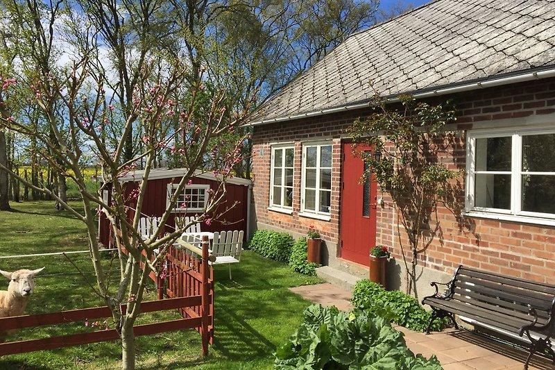 Lyckås Ferienhaus