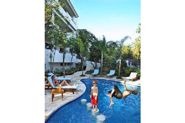 Riviera Maya Suites en Playa Del Carmen - imágen 1