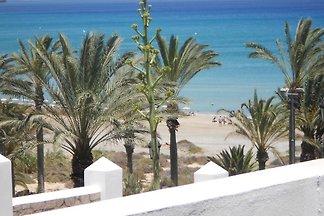 Palm Garden-Costa Calma * Meerblick