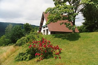 Holiday home in the southern Vosges