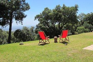 Vakantiehuis Ontspannende vakantie Monchique