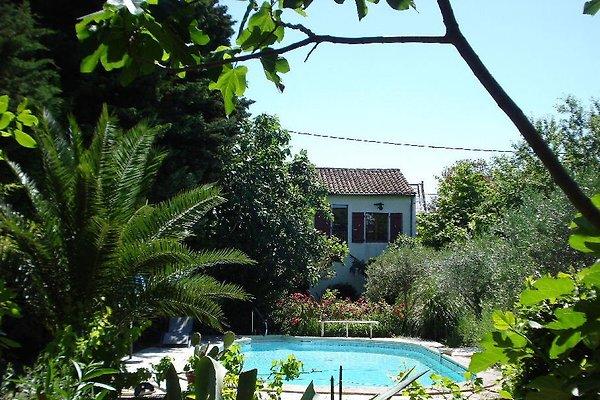 Maison Méridionale in Salleles dAude - immagine 1