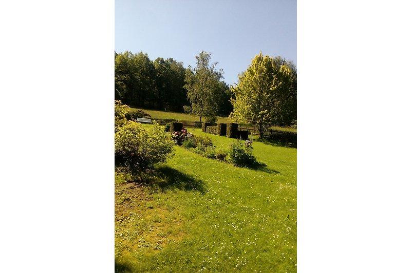 Großer eingezäunter Garten